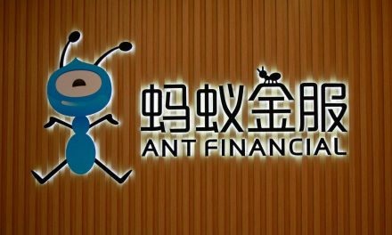 Warburg Pincus in talks to invest in Ant